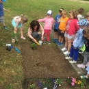 Zakładamy ogródek warzywny_6