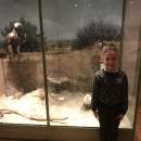 Wycieczka do Muzeum Przyrody_40