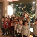 Wycieczka do Muzeum Przyrody_41