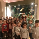 Wycieczka do Muzeum Przyrody_42