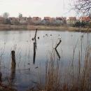 I Dzień Wiosny_25